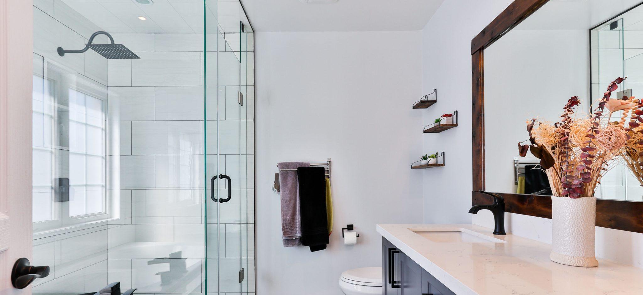 bathroom_shower-door